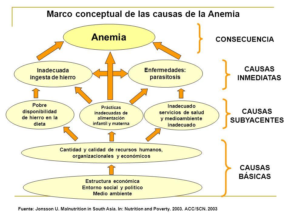 Anemia Inadecuada ingesta de hierro Enfermedades: parasitosis Pobre disponibilidad de hierro en la dieta Prácticas inadecuadas de alimentación infanti