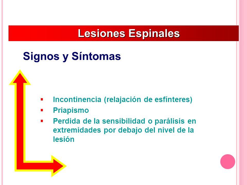 Incontinencia (relajación de esfínteres) Priapismo Perdida de la sensibilidad o parálisis en extremidades por debajo del nivel de la lesión Lesiones Espinales Lesiones Espinales Signos y Síntomas