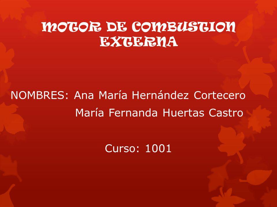 NOMBRES: Ana María Hernández Cortecero María Fernanda Huertas Castro Curso: 1001