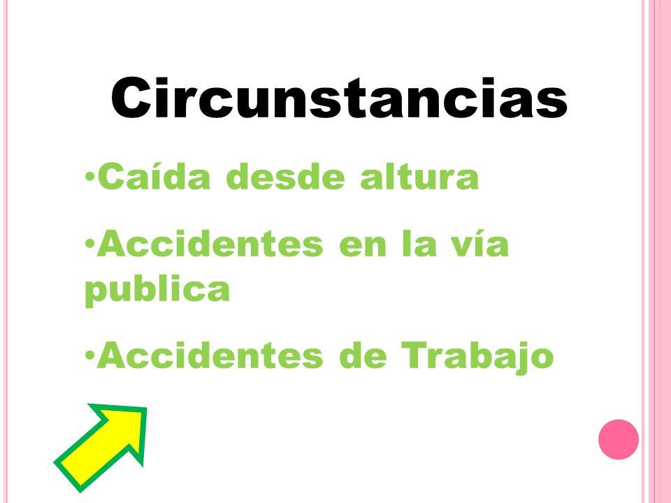 Circunstancias Caída desde altura Accidentes en la vía publica Accidentes de Trabajo