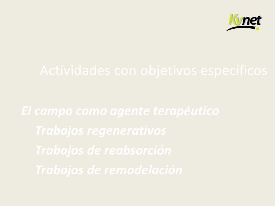 Actividades con objetivos específicos El campo como agente terapéutico Trabajos regenerativos Trabajos de reabsorción Trabajos de remodelación
