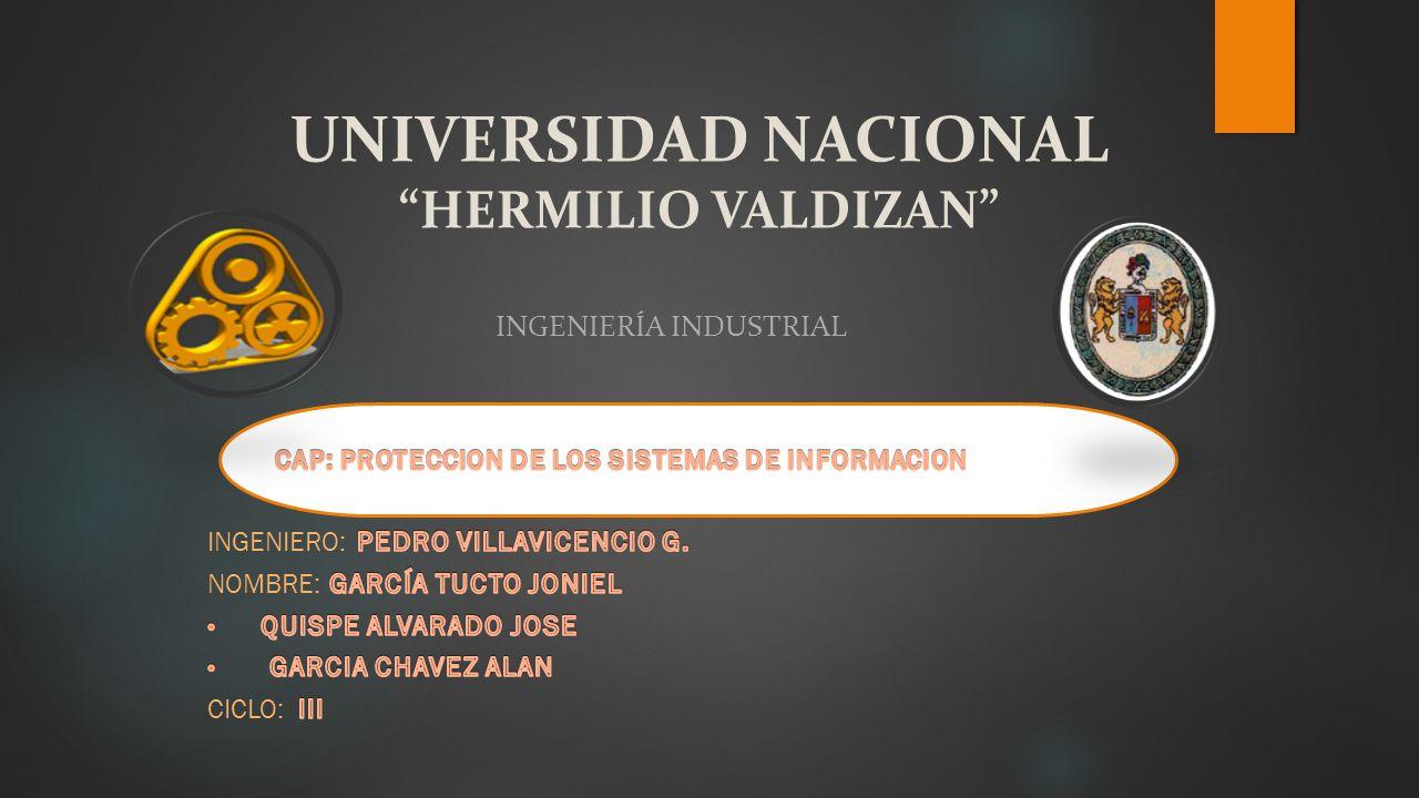 UNIVERSIDAD NACIONAL HERMILIO VALDIZAN INGENIERÍA INDUSTRIAL