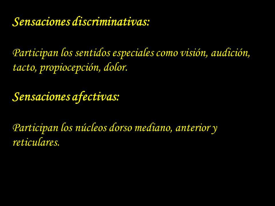 Sensaciones discriminativas: Participan los sentidos especiales como visión, audición, tacto, propiocepción, dolor. Sensaciones afectivas: Participan