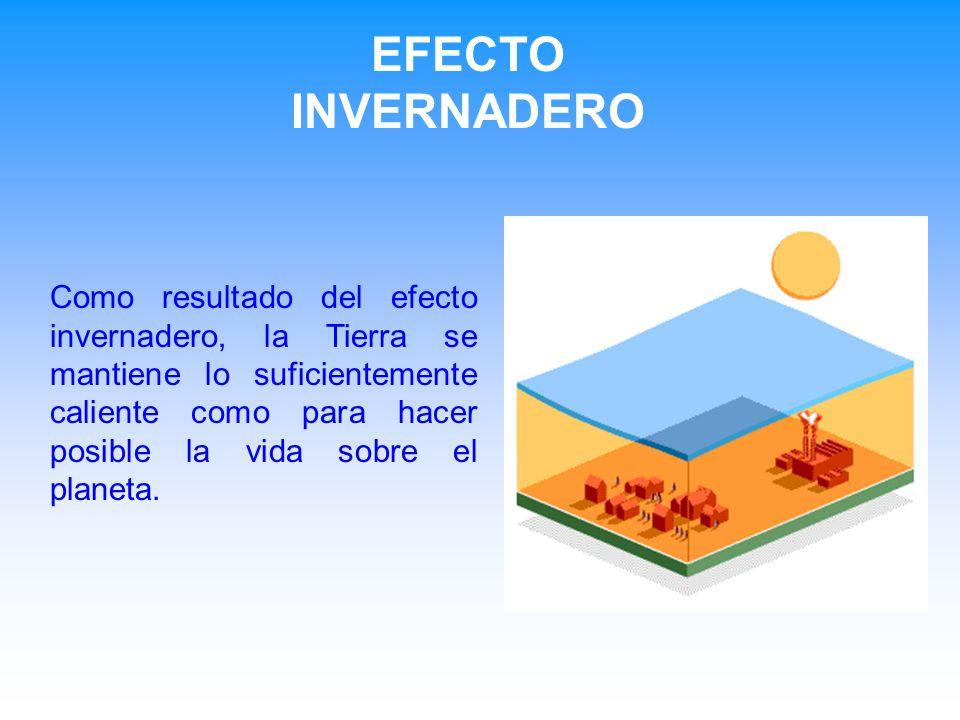 EFECTO INVERNADERO Como resultado del efecto invernadero, la Tierra se mantiene lo suficientemente caliente como para hacer posible la vida sobre el planeta.