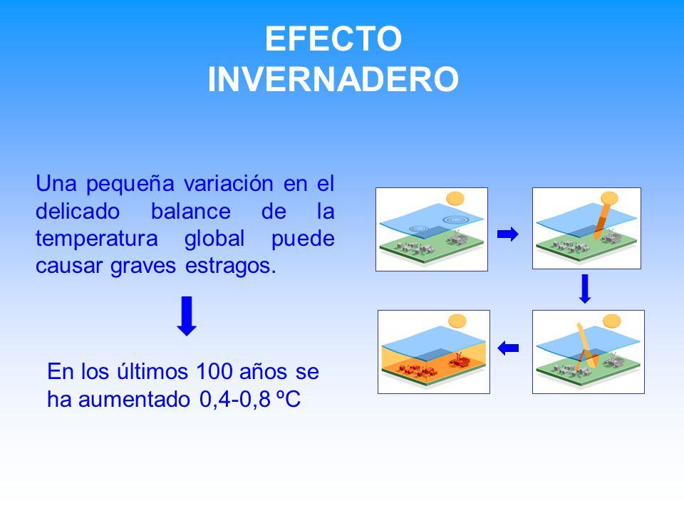 Una pequeña variación en el delicado balance de la temperatura global puede causar graves estragos. En los últimos 100 años se ha aumentado 0,4-0,8 ºC