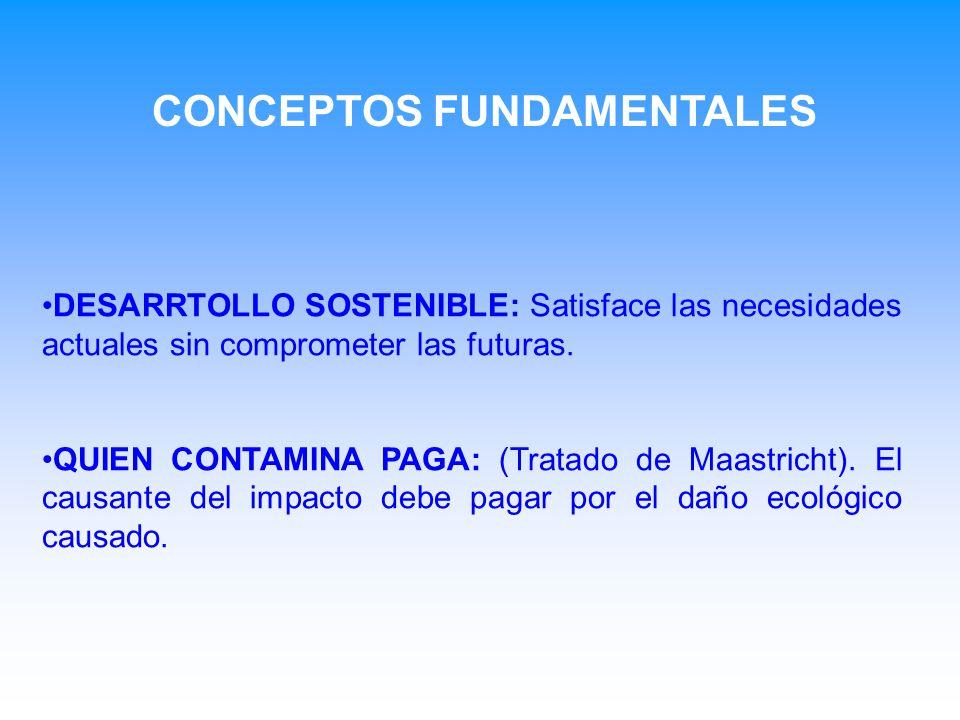 DESARRTOLLO SOSTENIBLE: Satisface las necesidades actuales sin comprometer las futuras. QUIEN CONTAMINA PAGA: (Tratado de Maastricht). El causante del