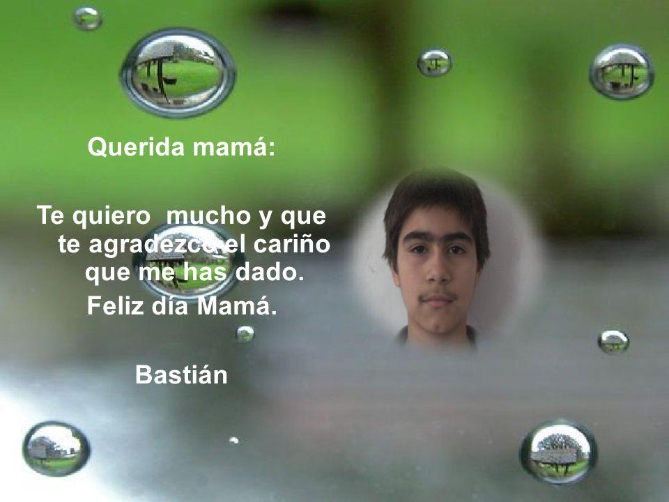 Querida mamá: Te quiero mucho y que te agradezco el cariño que me has dado. Feliz día Mamá. Bastián