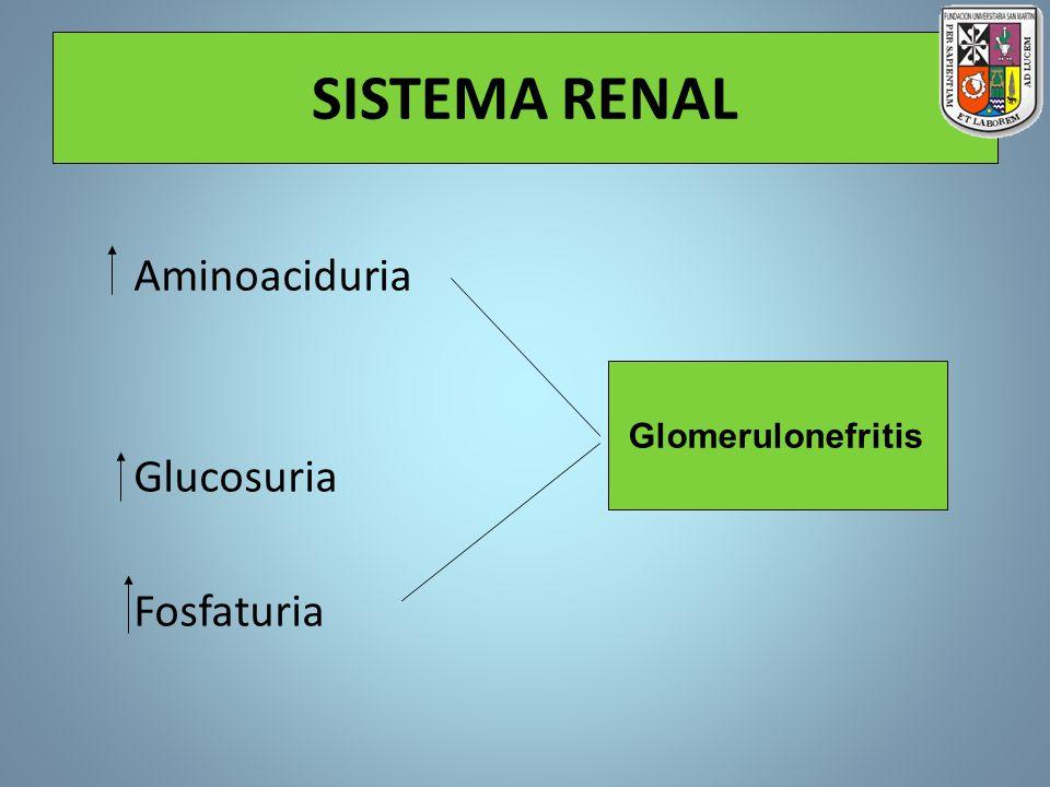 SISTEMA RENAL Aminoaciduria Glucosuria Fosfaturia Glomerulonefritis