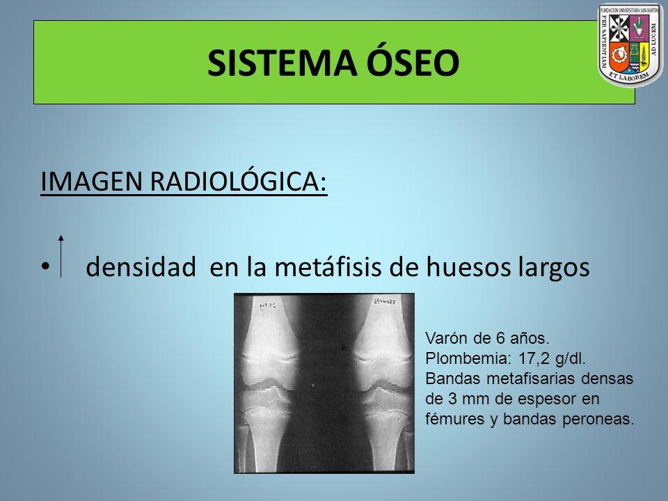 SISTEMA ÓSEO IMAGEN RADIOLÓGICA: densidad en la metáfisis de huesos largos Varón de 6 años. Plombemia: 17,2 g/dl. Bandas metafisarias densas de 3 mm d