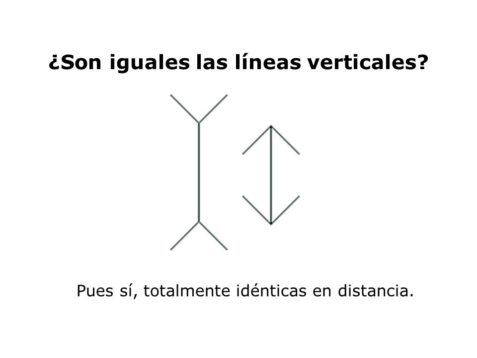 ¿Son iguales las líneas verticales? Pues sí, totalmente idénticas en distancia.