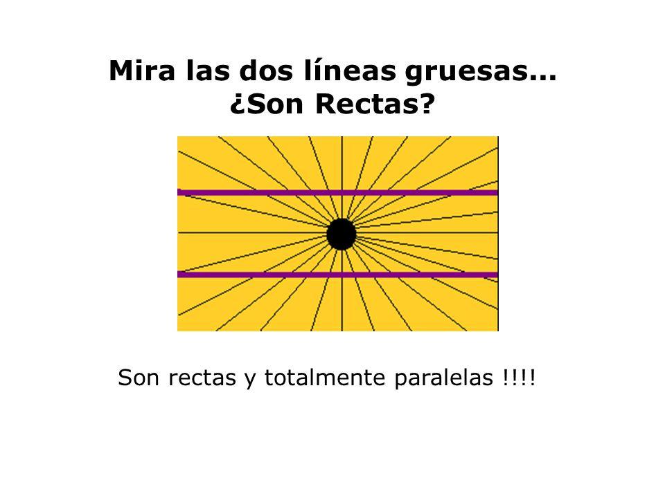 Mira las dos líneas gruesas... ¿Son Rectas? Son rectas y totalmente paralelas !!!!