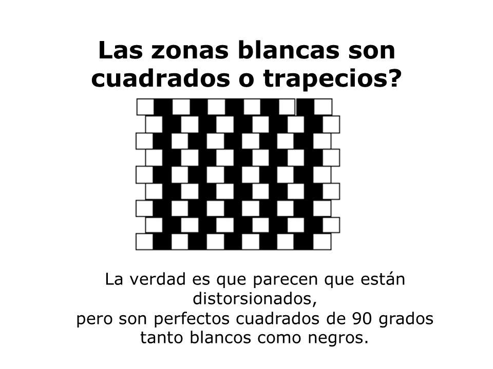 Las zonas blancas son cuadrados o trapecios? La verdad es que parecen que están distorsionados, pero son perfectos cuadrados de 90 grados tanto blanco