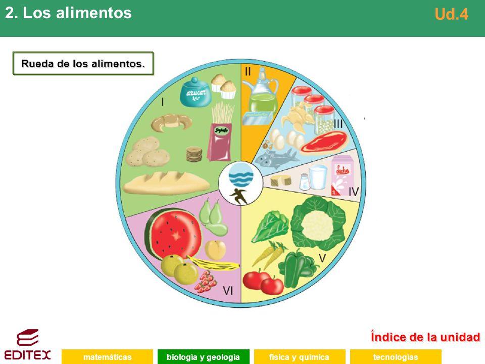 Índice de la unidad Índice de la unidad matemáticasfísica y químicatecnologíasbiología y geología 2. Los alimentos Ud.4 Rueda de los alimentos.