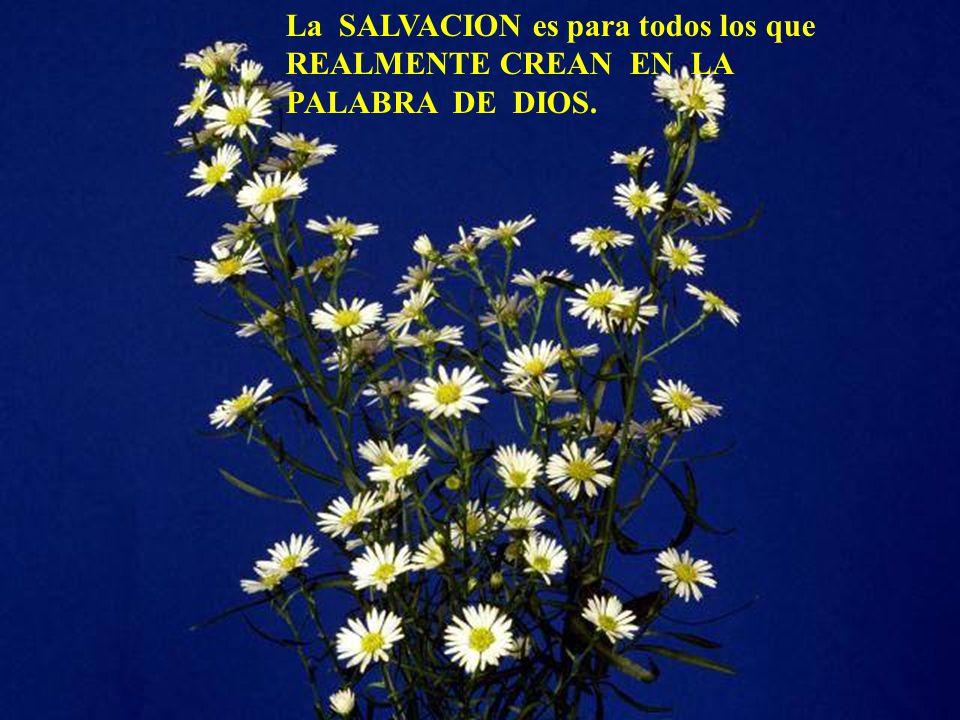 La SALVACION es para todos los que REALMENTE CREAN EN LA PALABRA DE DIOS.