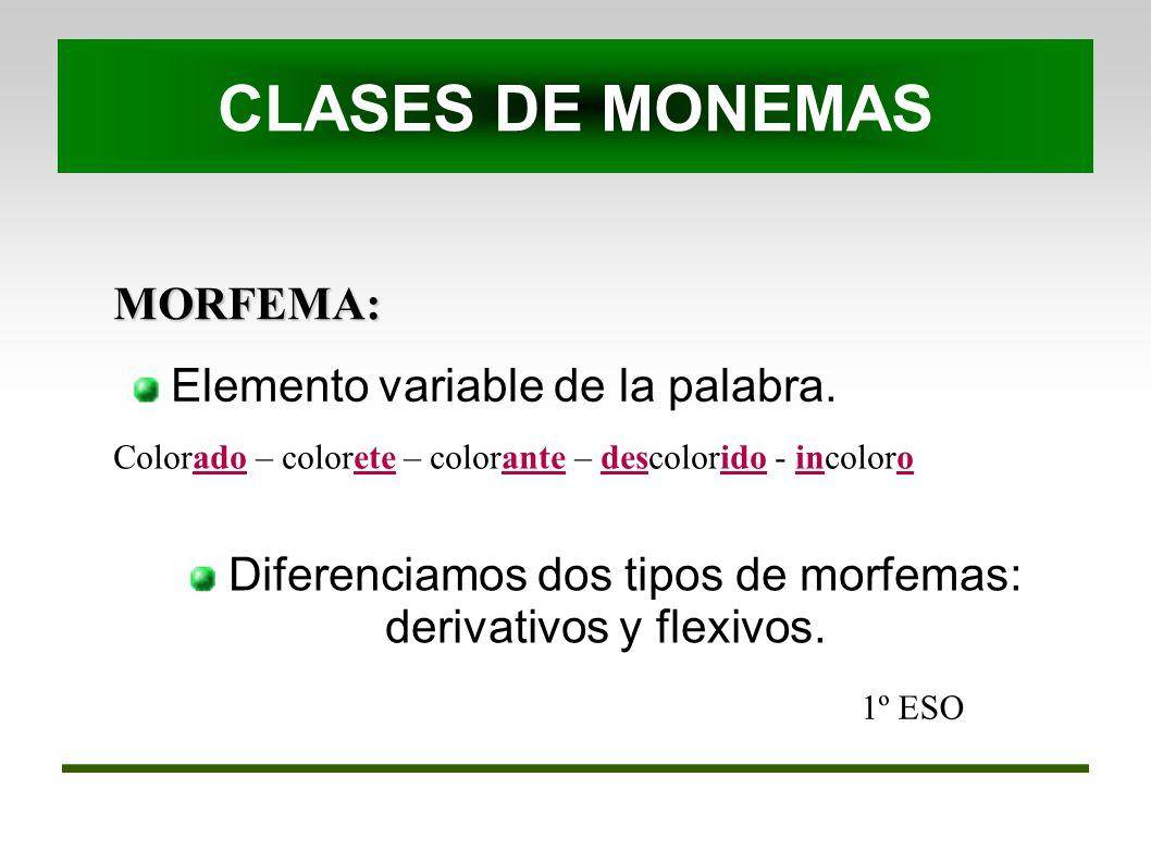 MORFEMA: 1º ESO Elemento variable de la palabra. CLASES DE MONEMAS Colorado – colorete – colorante – descolorido - incoloro Diferenciamos dos tipos de