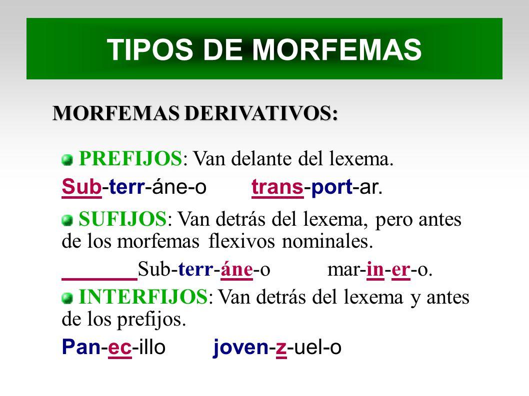 MORFEMAS DERIVATIVOS: PREFIJOS: Van delante del lexema. Sub-terr-áne-otrans-port-ar. SUFIJOS: Van detrás del lexema, pero antes de los morfemas flexiv