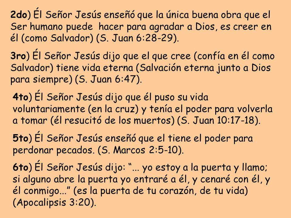 2do) Él Señor Jesús enseñó que la única buena obra que el Ser humano puede hacer para agradar a Dios, es creer en él (como Salvador) (S.