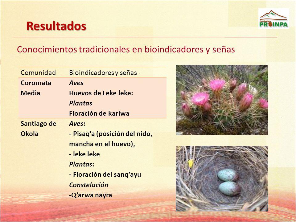 ComunidadBioindicadores y señas Coromata Media Aves Huevos de Leke leke: Plantas Floración de kariwa Santiago de Okola Aves: - Pisaqa (posición del ni