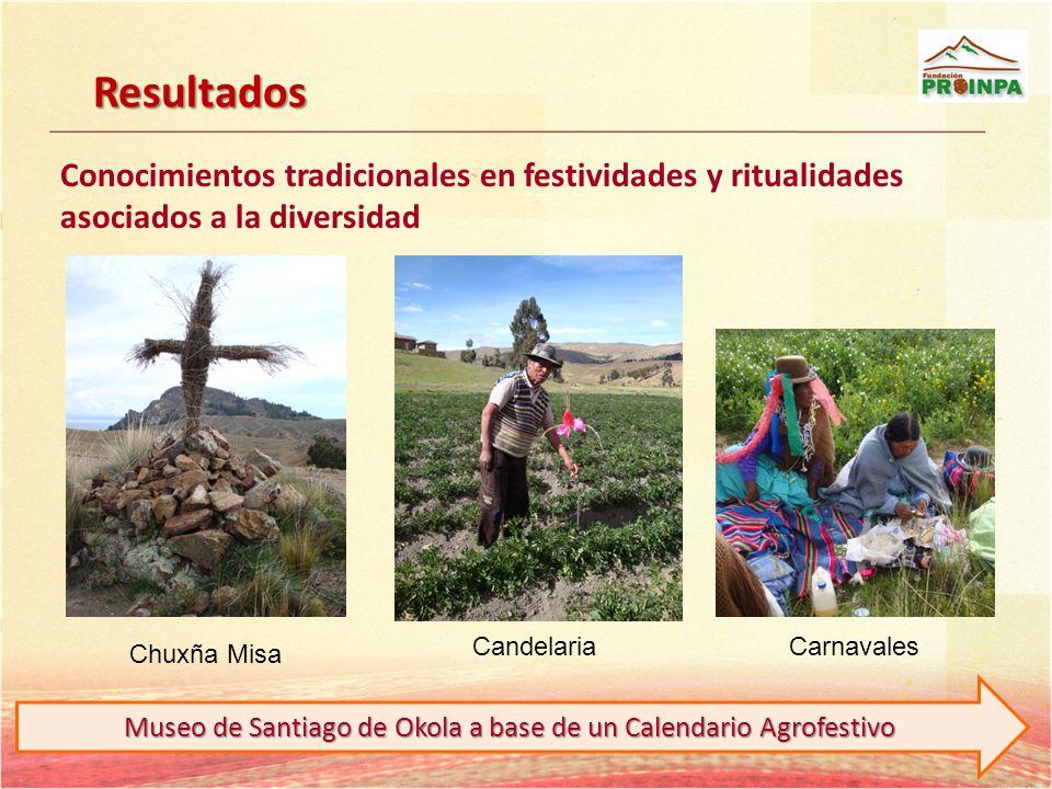 Conocimientos tradicionales en festividades y ritualidades asociados a la diversidad Chuxña Misa CandelariaCarnavales Resultados Museo de Santiago de