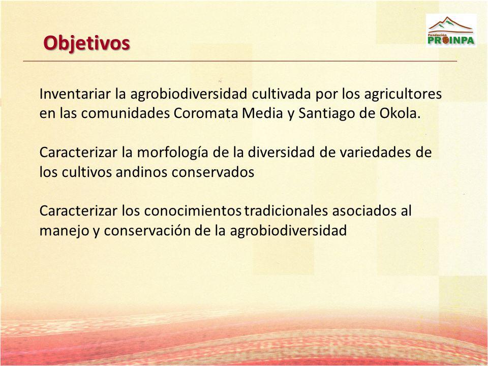 Objetivos Inventariar la agrobiodiversidad cultivada por los agricultores en las comunidades Coromata Media y Santiago de Okola. Caracterizar la morfo
