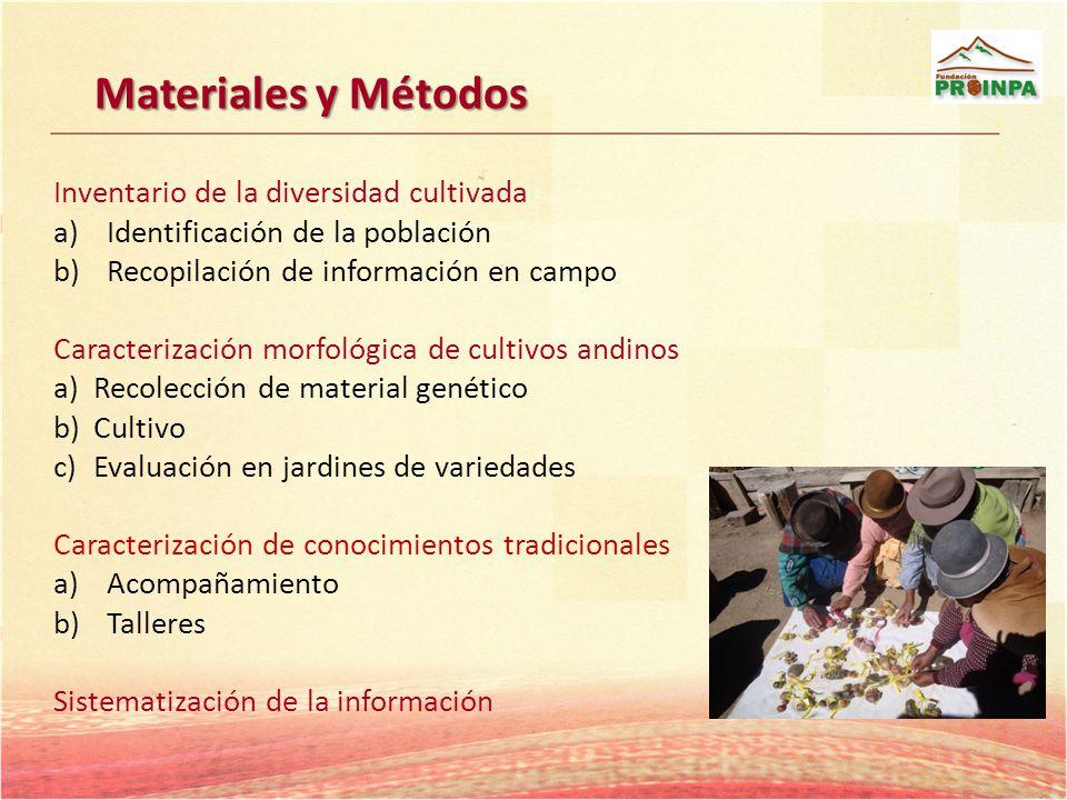 Materiales y Métodos Inventario de la diversidad cultivada a)Identificación de la población b)Recopilación de información en campo Caracterización mor