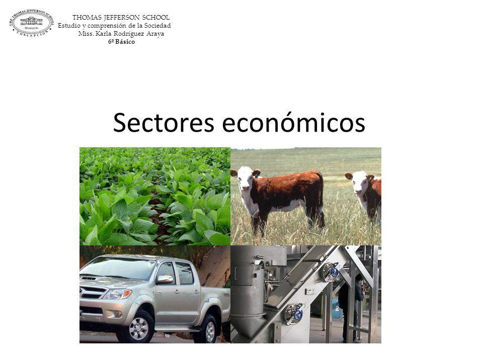 Sectores económicos THOMAS JEFFERSON SCHOOL Estudio y comprensión de la Sociedad Miss. Karla Rodríguez Araya 6º Básico
