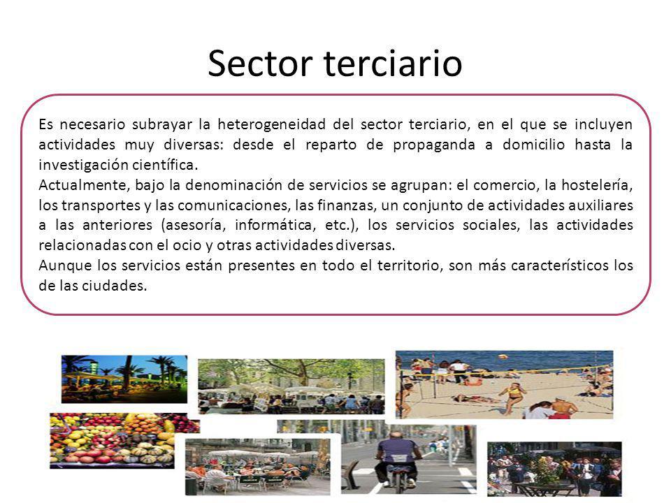 Sector terciario Es necesario subrayar la heterogeneidad del sector terciario, en el que se incluyen actividades muy diversas: desde el reparto de pro