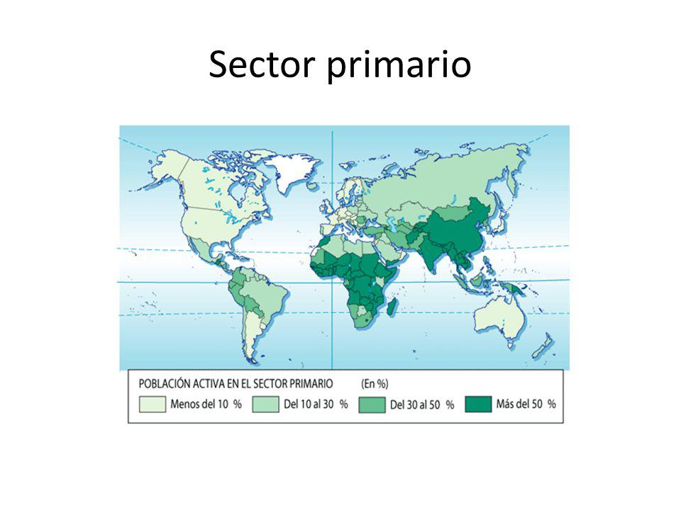 El sector primario comprende todas las actividades que se basan en la extracción de bienes y recursos procedentes del medio natural: la agricultura, la ganadería, la pesca, la caza, la explotación forestal y la minería.