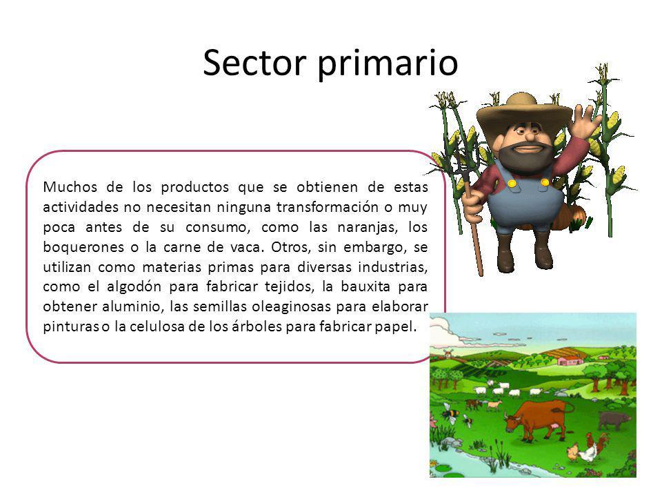 Sector primario Muchos de los productos que se obtienen de estas actividades no necesitan ninguna transformación o muy poca antes de su consumo, como