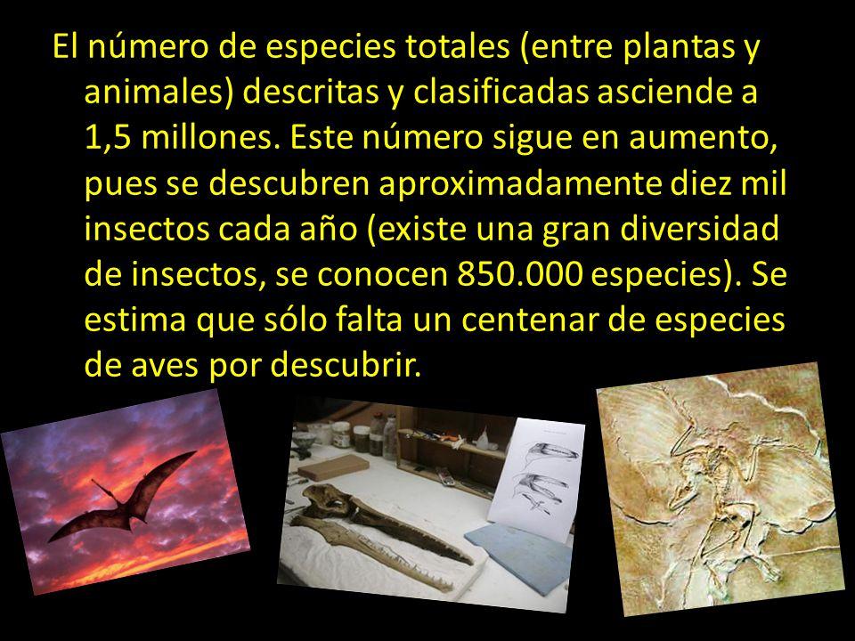 El número de especies totales (entre plantas y animales) descritas y clasificadas asciende a 1,5 millones.