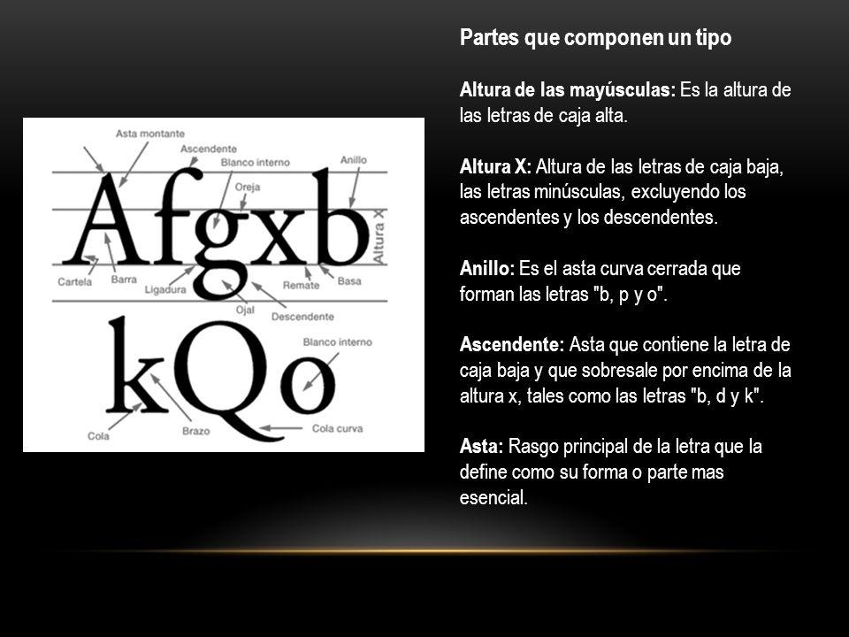 Astas montantes: Son las astas principales o oblicuas de una letra, tales como la L, B, V o A .