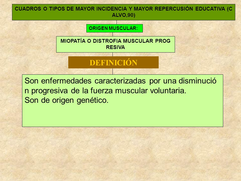 CUADROS O TIPOS DE MAYOR INCIDENCIA Y MAYOR REPERCUSIÓN EDUCATIVA (C ALVO,90) ORIGEN MUSCULAR: MIOPATÍA O DISTROFIA MUSCULAR PROG RESIVA Son enfermeda