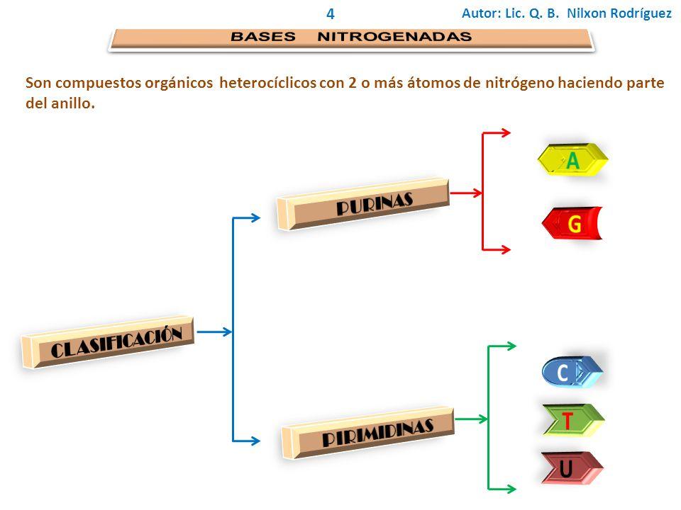 4 Son compuestos orgánicos heterocíclicos con 2 o más átomos de nitrógeno haciendo parte del anillo.