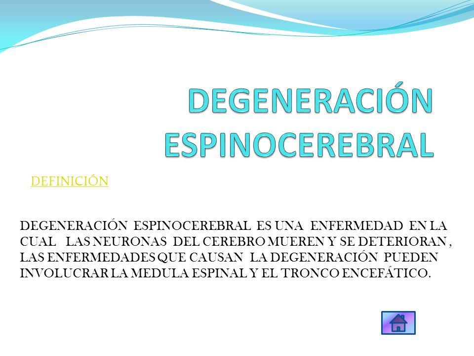 diapositiva DEGENERACIÓN ESPINOCEREBRAL ES UNA ENFERMEDAD EN LA CUAL LAS NEURONAS DEL CEREBRO MUEREN Y SE DETERIORAN, LAS ENFERMEDADES QUE CAUSAN LA D