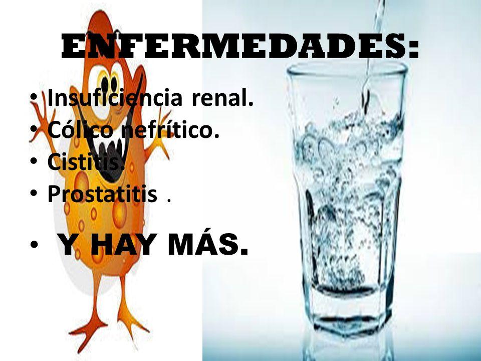 ENFERMEDADES: Insuficiencia renal. Cólico nefrítico. Cistitis. Prostatitis. Y HAY MÁS.