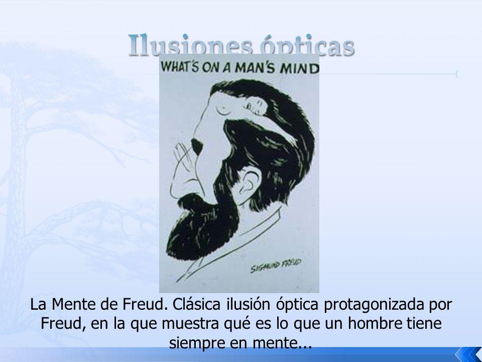 La Mente de Freud. Clásica ilusión óptica protagonizada por Freud, en la que muestra qué es lo que un hombre tiene siempre en mente...