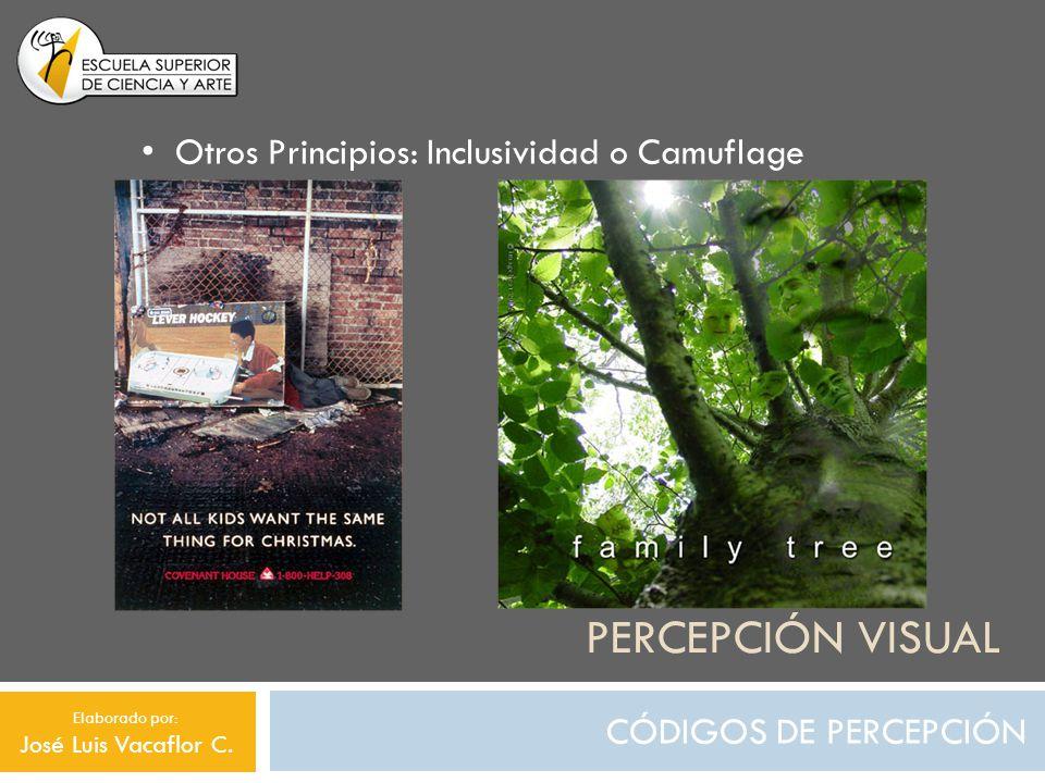 PERCEPCIÓN VISUAL CÓDIGOS DE PERCEPCIÓN Otros Principios: Inclusividad o Camuflage Elaborado por: José Luis Vacaflor C.