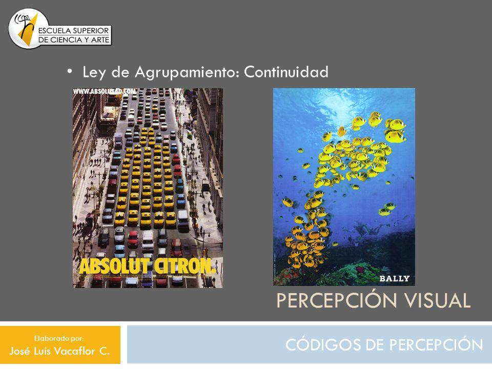 PERCEPCIÓN VISUAL CÓDIGOS DE RELACIÓN Relación Significativa: Función de Relevo Elaborado por: José Luis Vacaflor C.