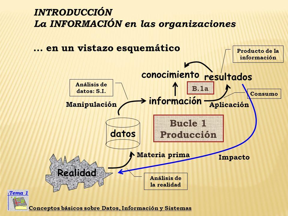 INTRODUCCIÓN La INFORMACIÓN en las organizaciones Conceptos básicos sobre Datos, Información y Sistemas Atención... Desde el punto de vista de los ord