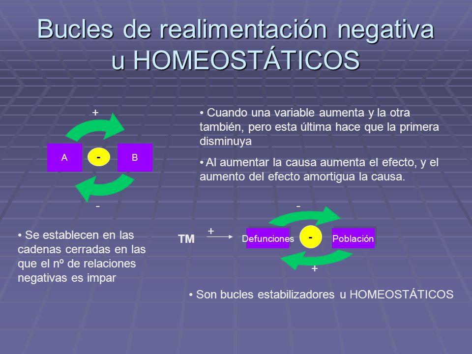 Bucles de realimentación negativa u HOMEOSTÁTICOS BA + - - Cuando una variable aumenta y la otra también, pero esta última hace que la primera disminu