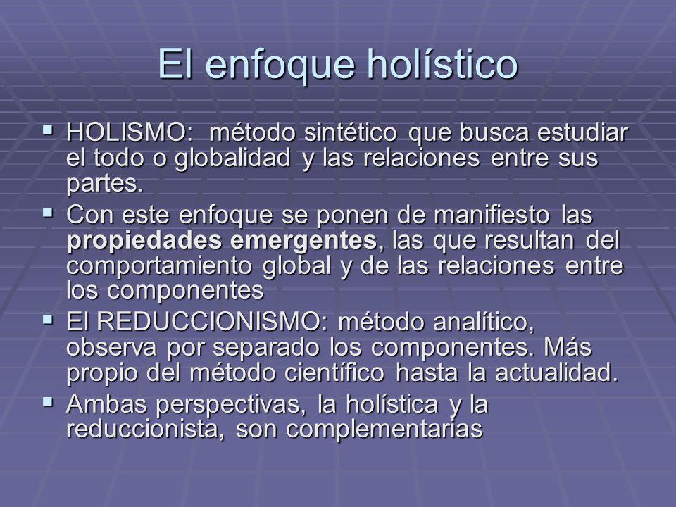 El enfoque holístico HOLISMO: método sintético que busca estudiar el todo o globalidad y las relaciones entre sus partes. HOLISMO: método sintético qu