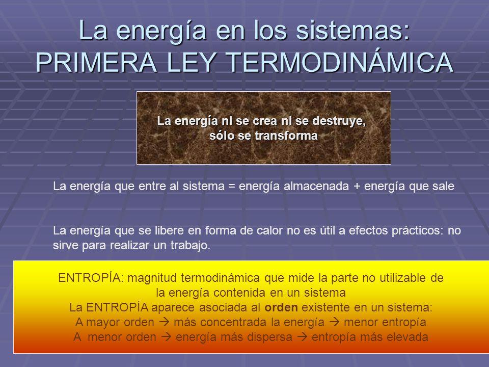 La energía en los sistemas: PRIMERA LEY TERMODINÁMICA La energía ni se crea ni se destruye, sólo se transforma La energía que entre al sistema = energ