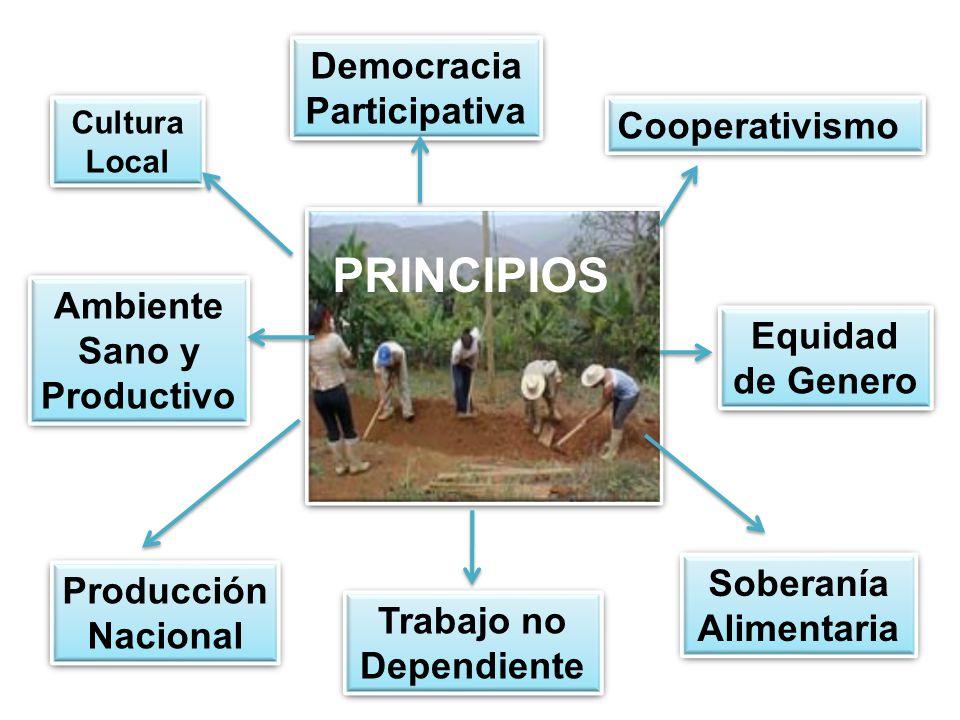 Democracia Participativa Cooperativismo Cultura Local Equidad de Genero Soberanía Alimentaria Trabajo no Dependiente Producción Nacional Ambiente Sano y Productivo PRINCIPIOS