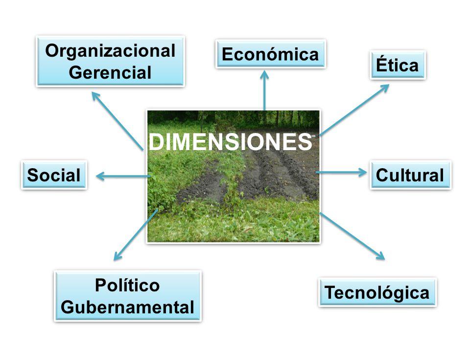 Ética Cultural Tecnológica Económica Político Gubernamental Político Gubernamental Organizacional Gerencial Organizacional Gerencial DIMENSIONES Social