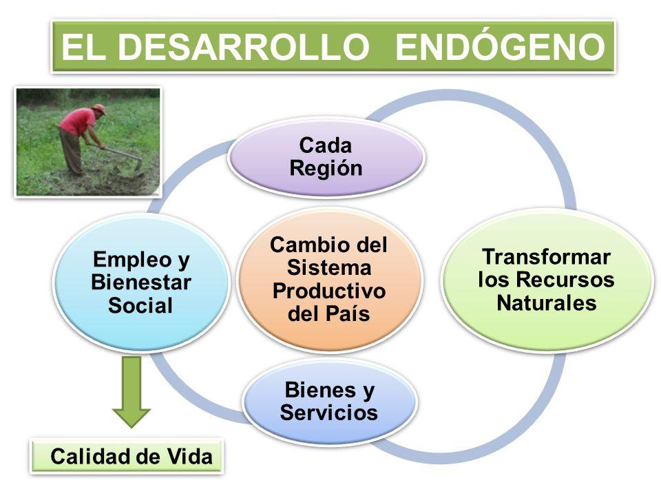 ECONOMÍA SOCIAL Estructura de Funcionamiento Acorde con Principios y Valores Solidaridad Igualdad Trabajo Colectivo