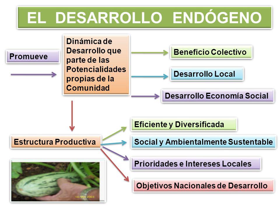 EL DESARROLLO ENDÓGENO Promueve Dinámica de Desarrollo que parte de las Potencialidades propias de la Comunidad Beneficio Colectivo Desarrollo Local Desarrollo Economía Social Estructura Productiva Eficiente y Diversificada Social y Ambientalmente Sustentable Prioridades e Intereses Locales Objetivos Nacionales de Desarrollo