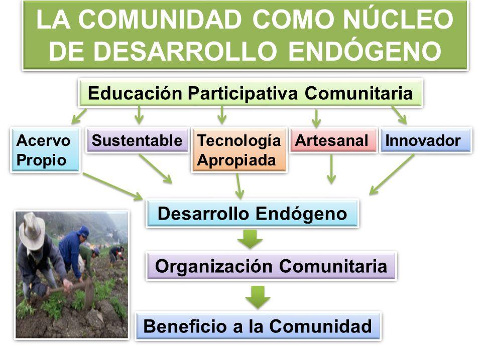 LA COMUNIDAD COMO NÚCLEO DE DESARROLLO ENDÓGENO Educación Participativa Comunitaria Acervo Propio Acervo Propio Sustentable Tecnología Apropiada Tecnología Apropiada Artesanal Innovador Desarrollo Endógeno Organización Comunitaria Beneficio a la Comunidad