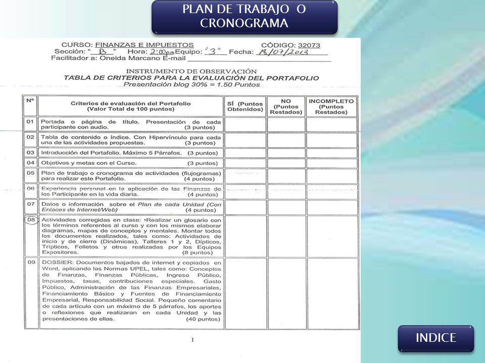 PLAN DE TRABAJO O CRONOGRAMA INDICE