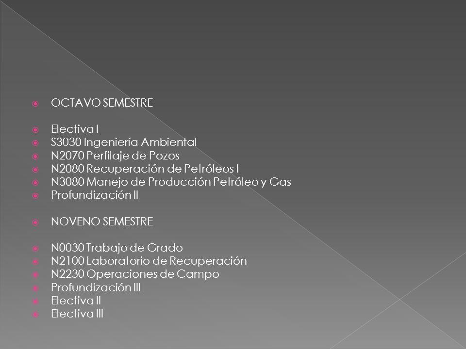 OCTAVO SEMESTRE Electiva I S3030 Ingeniería Ambiental N2070 Perfilaje de Pozos N2080 Recuperación de Petróleos I N3080 Manejo de Producción Petróleo y Gas Profundización II NOVENO SEMESTRE N0030 Trabajo de Grado N2100 Laboratorio de Recuperación N2230 Operaciones de Campo Profundización III Electiva II Electiva III