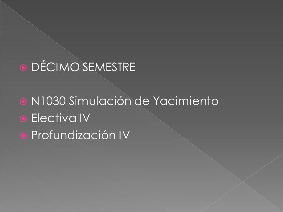 DÉCIMO SEMESTRE N1030 Simulación de Yacimiento Electiva IV Profundización IV